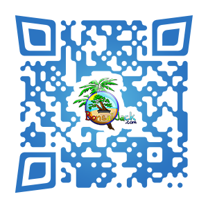 What are Qr codes? Why is Bonsai Jack using them?