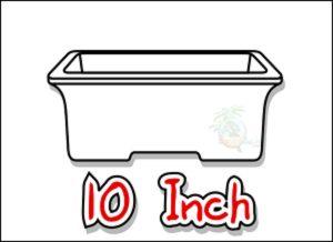 large_icon_10_inch_bonsai_pots