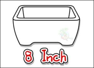 large_icon_8_inch_bonsai_pots